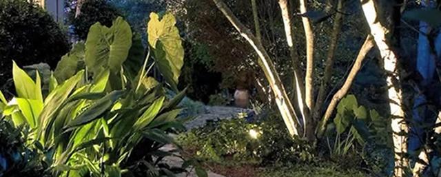 garden lighting path