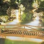 garden lighting around a pond with foot bridge