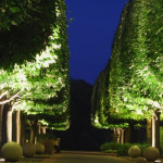 spectacular garden lighting